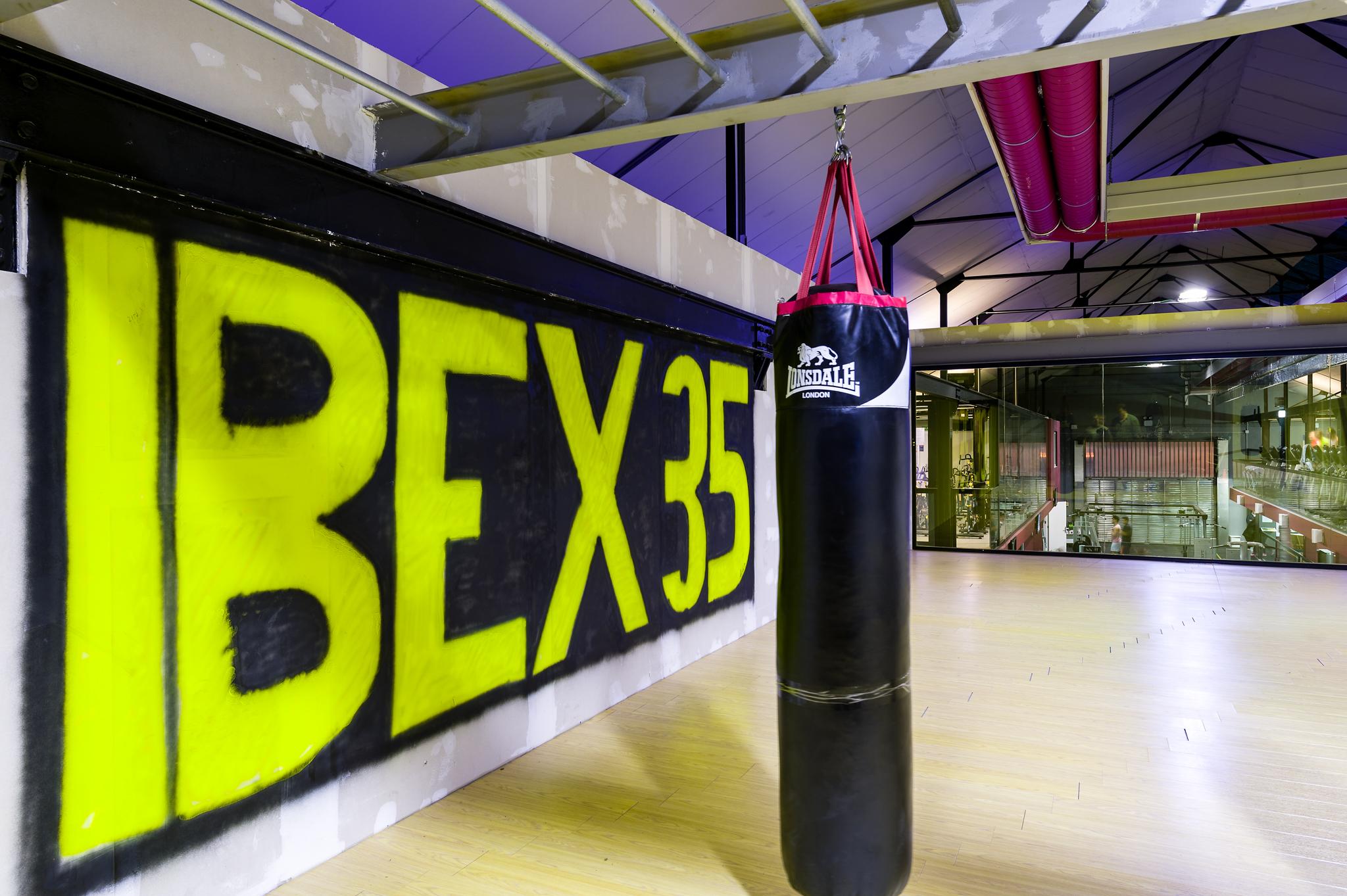 Ibex35-9